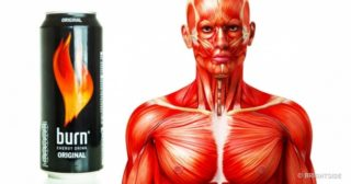 The Crazy Effects Energy Drinks Have on Your Body